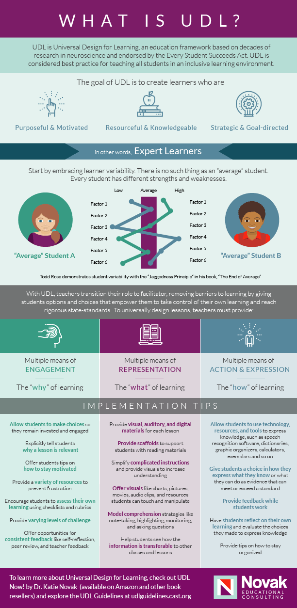What Is Udl E Learning Infographics