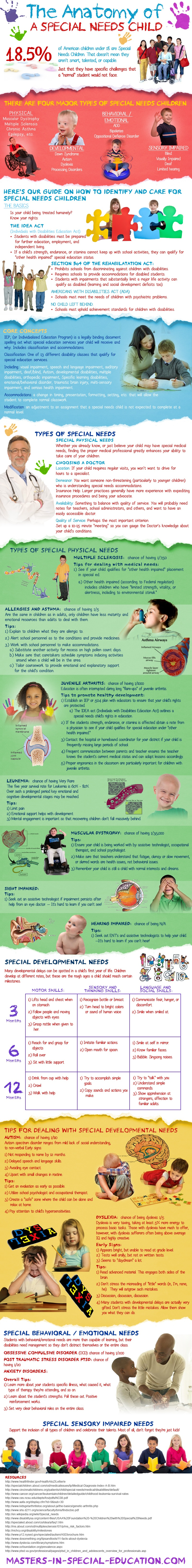 Anatomy of a Special Needs Child Infographic