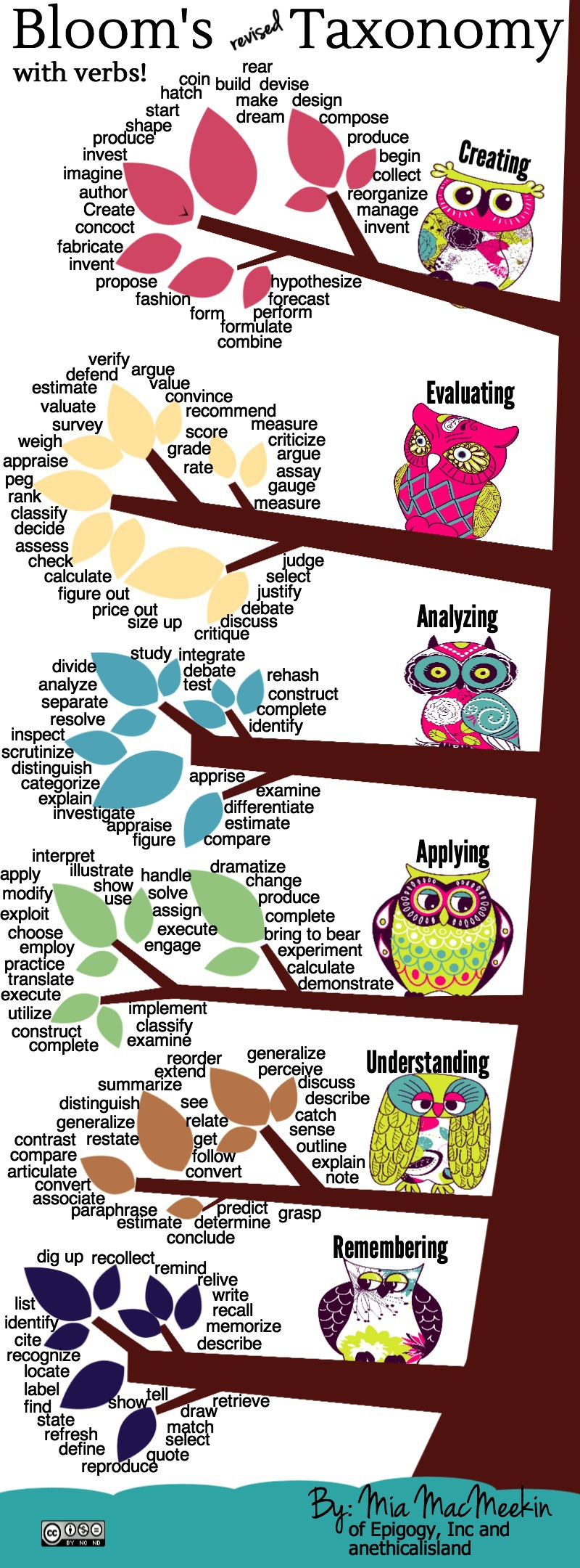 Bloom's Revised Taxonomy Action Verbs infographic