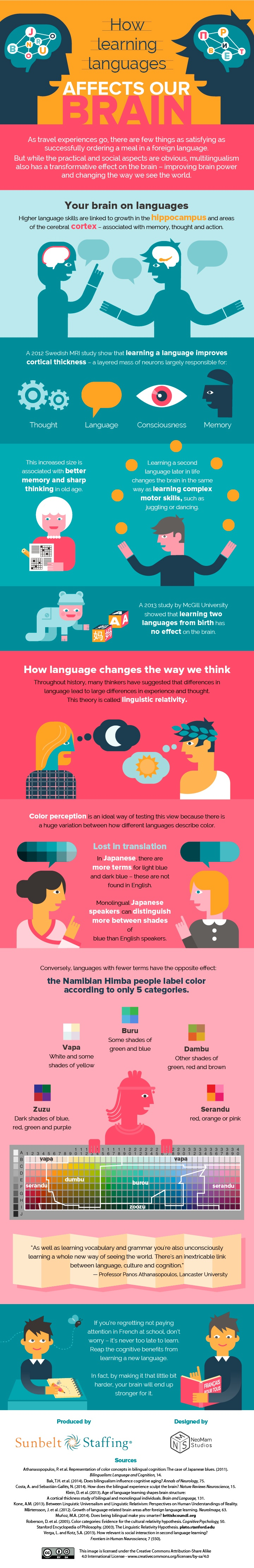 How Learning Languages Affects Our Brain Infographic