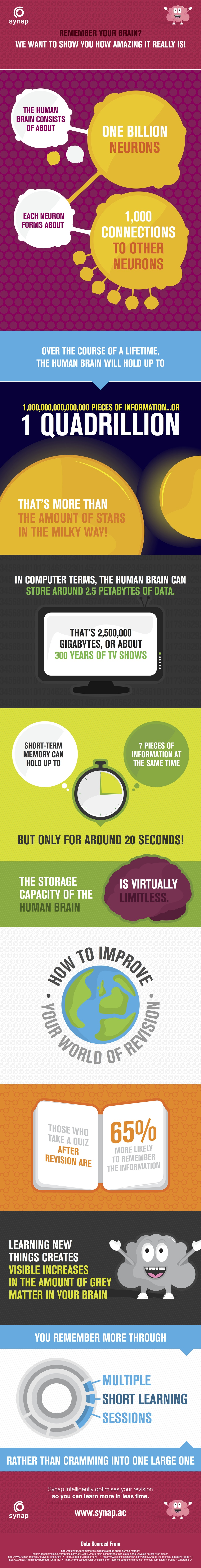 Your Amazing Memory Infographic